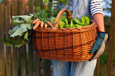 Supporting Image forGrocery Bills Bumming You Out? Start a Garden!